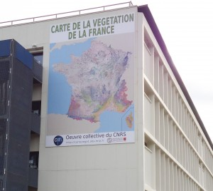 carte de vegetation